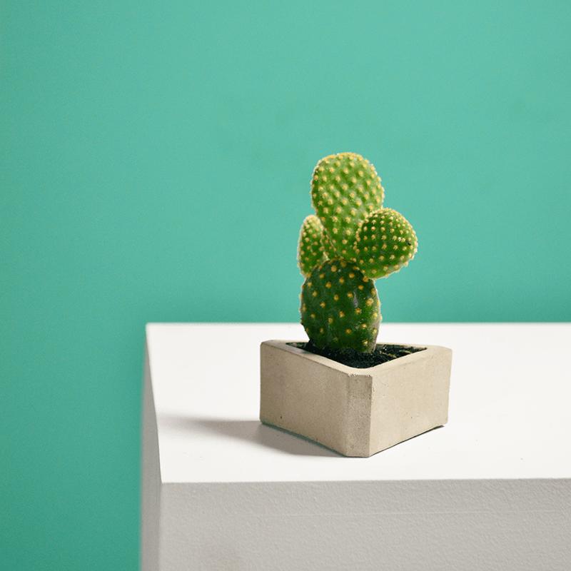 Matera de mesa delta con cactus ebani colombia